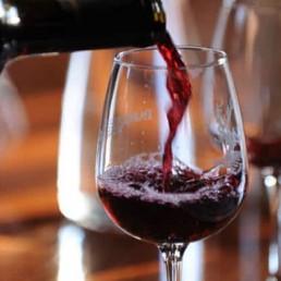 Viticulture & gastronomy 3