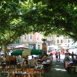 Viticulture & gastronomy 1